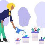social media growth