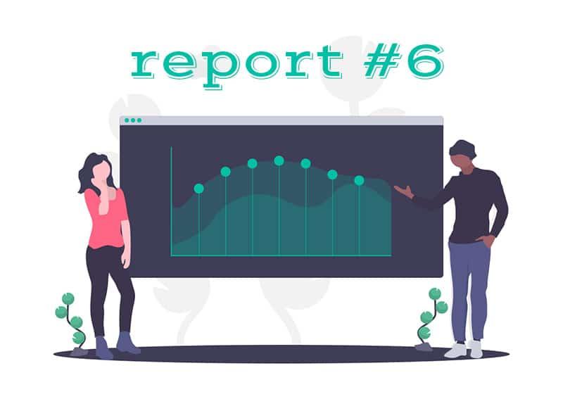 income report #6